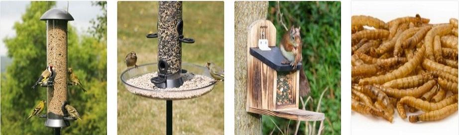 birdfood-co-uk-codes