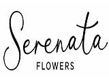 serenata-flowers